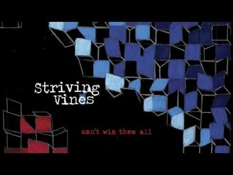 Клип Striving Vines - Somewhere I Used to Fly