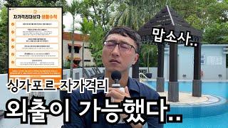맙소사! 외출이 가능했다.. | 싱가포르여행 | 싱가포…
