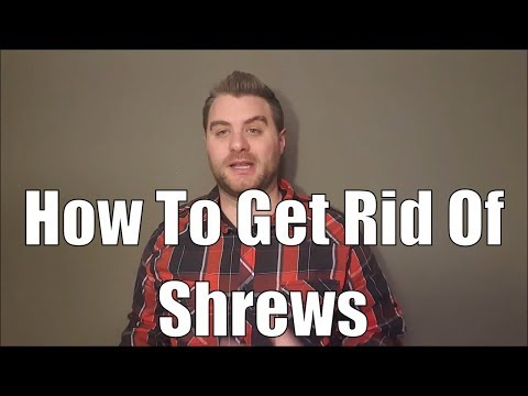 The taming of the shrew and how to get rid of shrews