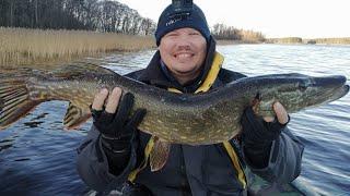 рыбалка в ноябре на щуку fishing in November for pike крупная щука