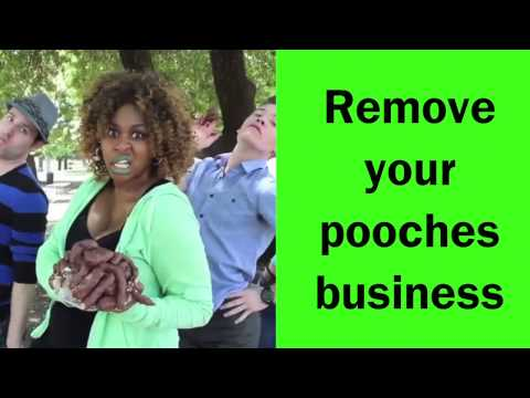 Pick Up After Your Dog - Lyric Video - GloZell