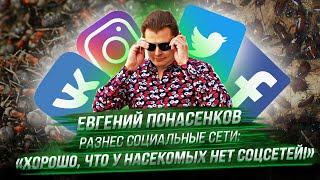 Евгений Понасенков разнес социальные сети: «хорошо, что у насекомых нет соцсетей!»