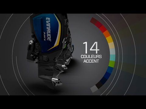 Design intelligent - Evinrude E-TEC G2