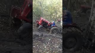 Izvlačenje drva po blatu IMT 558
