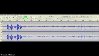EVP Voice Answers question about missing man