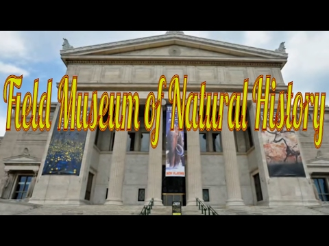 Visiting Field Museum of Natural History, Museum in Chicago, Illinois, United States