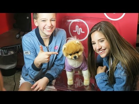 MACKENZIE ZIEGLER'S MUSIC RELEASE PARTY AT MUSICAL.LY (Day 116)