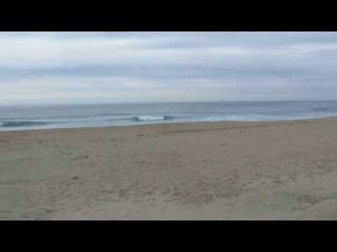 Laguna Creek Beach Video