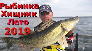 Клев судака и щуки летом на Рыбинском водохранилище 2019