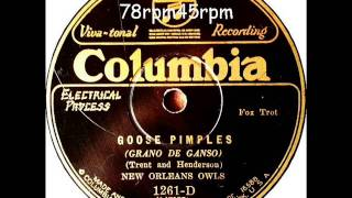 Goose Pimples   New Orleans Owls