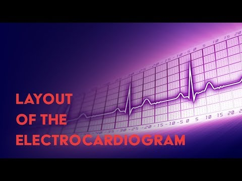 Layout of the Electrocardiogram - How to Read an Electrocardiogram (EKG) - MEDZCOOL