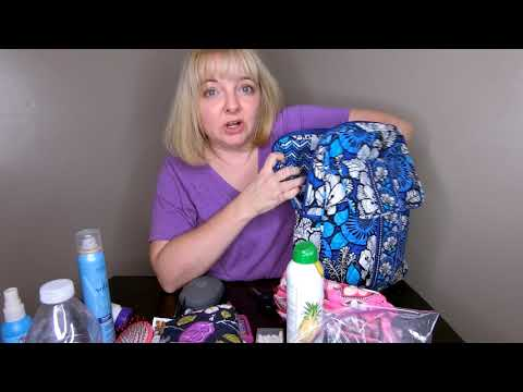 What can fit in a Vera Bradley small backpack?
