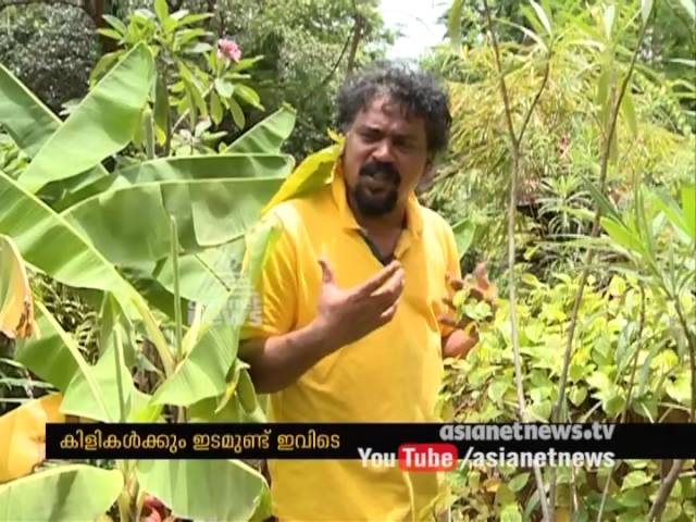 Santhosh Sivan's ( cinematographer) Success story of Organic Farming