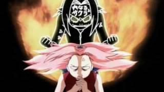 ~Every Inner Sakura Appearance~