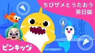 ちびザメはがぬけたよ | サメのかぞく | ちびザメとうたおう英日版 | どうぶつのうた | ピンキッツ童謡
