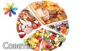 Какая норма употребления белков и углеводов? Рассказала диетолог Светлана Фус