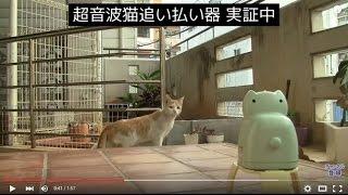 猫 糞 対策 超音波 猫除け ユタカメイク gdx m ガーデンバリア設置 退治 凄いことに