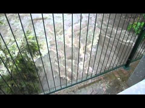Wolli Creek in flood
