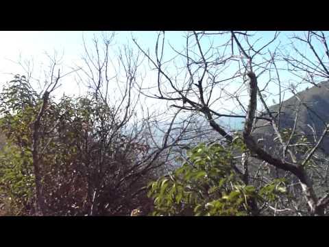 CLUB RAMIDOGG HIKING POINT MUGU STATE PARK 01/17/2012