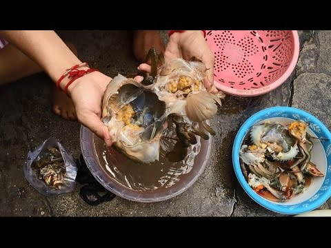 Amazing Crab Cutting | Fastest Dungeness Crabs Clean and Cutting | crab cutting cambodia thumbnail