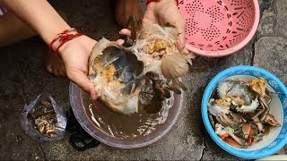 Amazing Crab Cutting | Fastest Dungeness Crabs Clean and Cutting | crab cutting cambodia