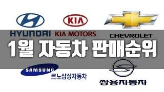 1월 국산차 차종별 & 브랜드별 판매순위 현대 …