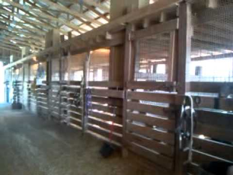 Ranch property for sale in mississippi youtube for Ranches for sale in mississippi