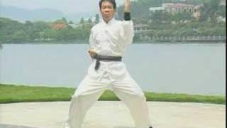 Hung Gar Kiu Gung