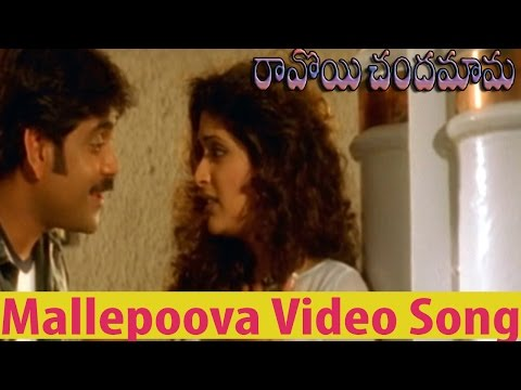 Ravoyi Chandamama Movie || Mallepoova Video Song ||  Nagarjuna Akkineni,Anjala Zhaveri