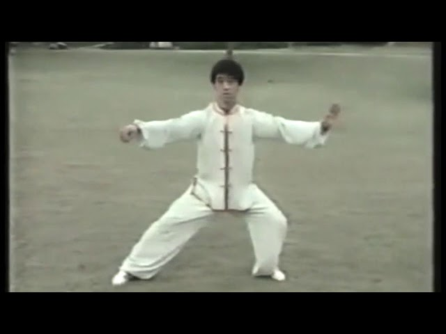 Chen Zheng Lei - Tai Chi style Chen Laojia Yilu 1986  [陈氏太极拳老架 Taijiquan style Chen]