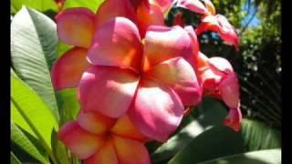 E Na Noqu mai tu, E na Buca Ni Valu....LTC choir, Fiji