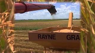 Louisiana Rice Checkoff Celebrates 40 Years