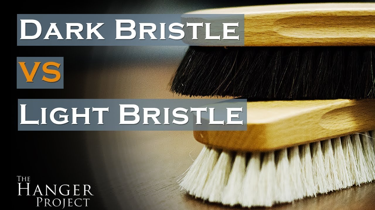 Bristle Shoe Shine Brush