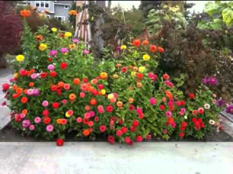 small flower garden ideas i kleine blumengarten ideen youtube. Black Bedroom Furniture Sets. Home Design Ideas