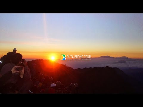 Duta Bromo Tour  Your Travel Solutions