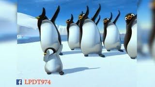 PAPA PINGOUIN DANSE COMME DAB ! thumbnail