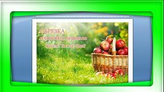 Рабушко Николай  -  Обрезка плодовых деревьев - вебинар полная версия.