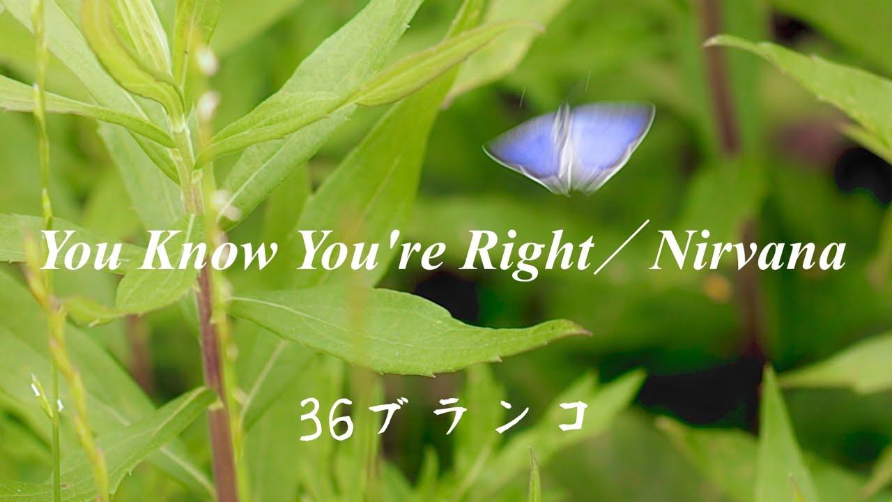 【洋楽】・【カバー】•【宅録】You Know You're Right/Nirvana/36ブランコ/(夫婦ユニットの音生活)