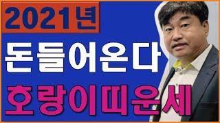 """2021년 운세 신축년 돈들어오는 호랑이띠?! ''호랑이띠 운세 대박"""" / 2021년…"""