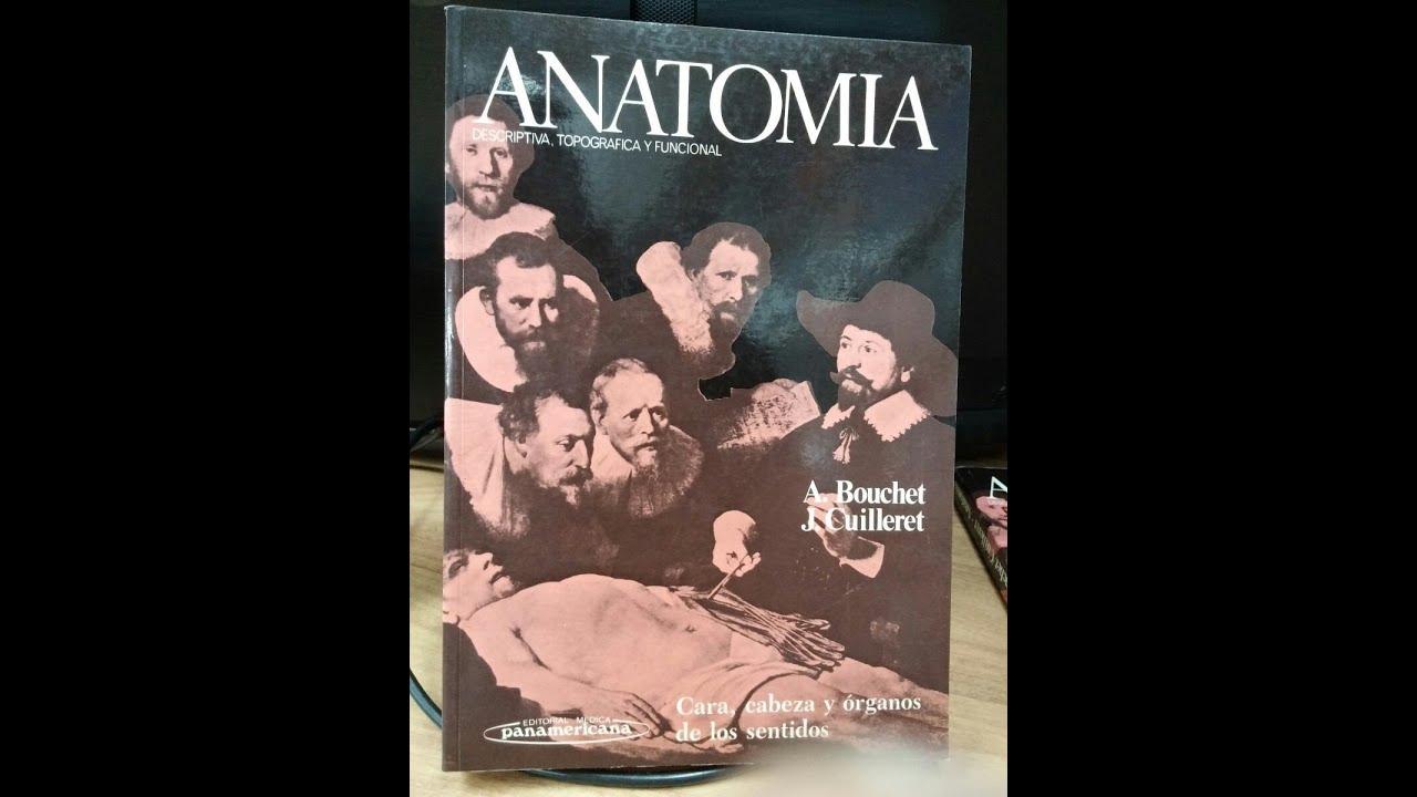 Compendio De Anatomia Humana Testut-latarjet Pdf