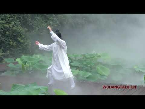 Wudang Tai Chi 13 by Master Chen Shiyu