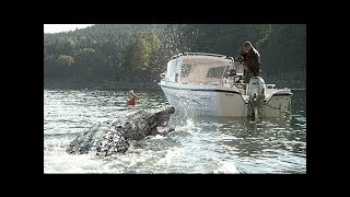 Shark Movies  Best Horror Movies Full English Movies - Scary Sci Fi Movie Hollywood