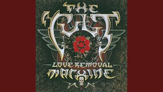 Love Removal Machine (Extended Version)