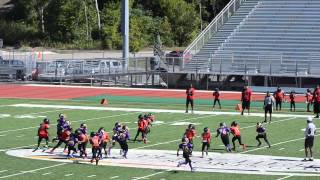 Gavin Harris #10 San Antonio Outlaws Offensive Highlights
