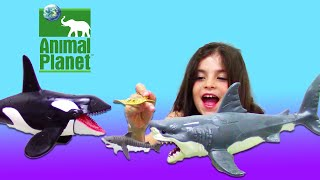Bath Sharks for Kids Toy UNBOXING: Animal Planet Mega Shark & Orca Encounter