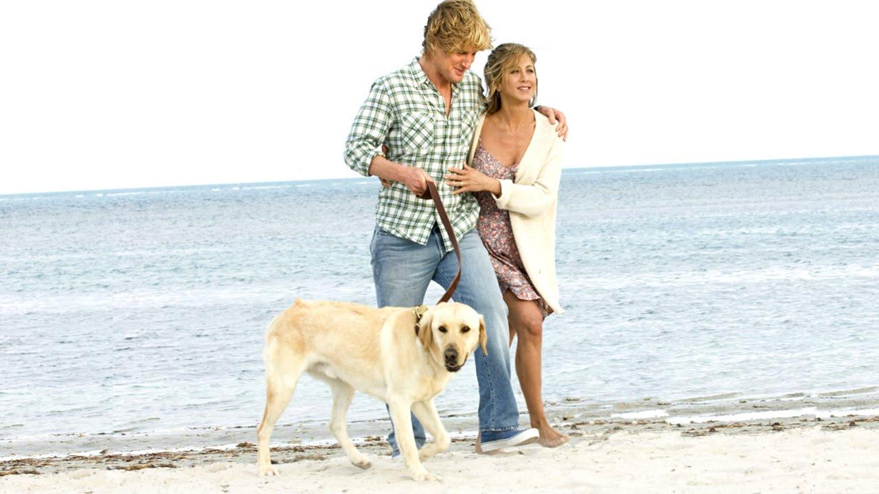 ТОП-5 лучших фильмов о собаках