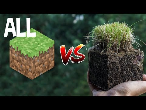 every minecraft vs real life episode playing at once