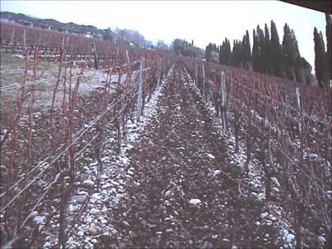 Lezione 3 - p1 di 2 - Corso agricoltura biologica 2016 - Istituto Stefani-Bentegodi San Floriano