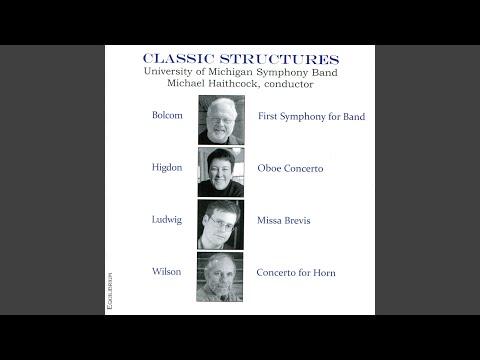 Oboe Concerto: Oboe Concerto