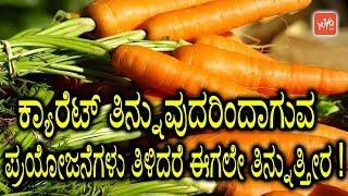 ಕ್ಯಾರೆಟ್ ತಿನ್ನುವುದರಿಂದಾಗುವ ಪ್ರಯೋಜನೆಗಳು ತಿಳಿದರೆ ಈಗಲೇ ತಿನ್ನುತ್ತೀರ !   Carrot Benefits In Kannada
